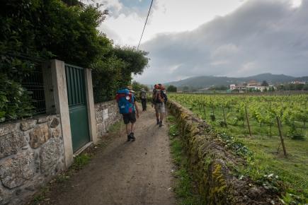 camino-portuguese-day-3-barcelos-to-ponte-de-lima_29633320407_o