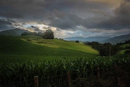 hiking-camino-de-santiago_40004467710_o