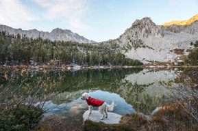 hiking-kearsarge-pass_41769743542_o