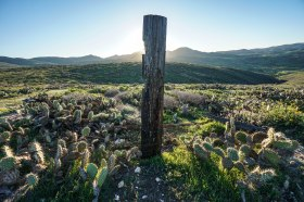 hiking-the-trans-catalina-trail_26943966787_o