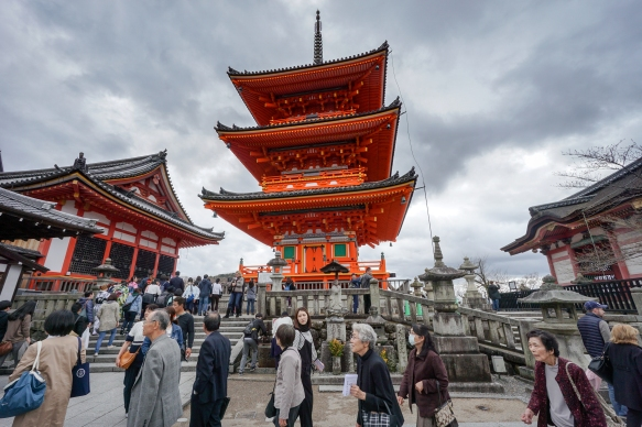 kyoto-to-tokyo-10-days-in-japan_40888278285_o