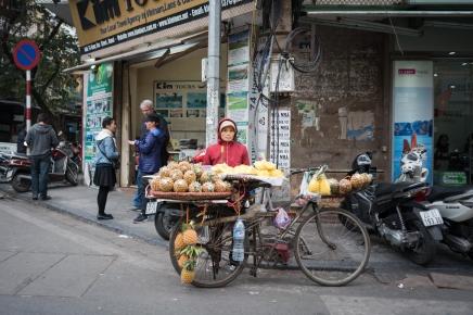 vietnam-hanoi---hoi-an---saigon_40823704405_o